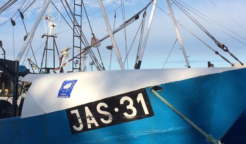 Galeria zdjęć Port i marina jachtowa w Jastarni w Jastarnia